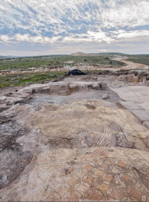 ארכיאולוגיה-בפסגות-אפק-ראש-העין-בתמונה-פסיפס-עתיק